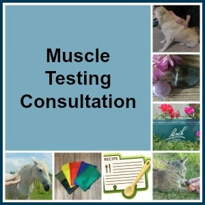 Muscle Testing Consultation, The Lightfoot Way