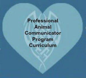 Professional Animal Communicator Programme, The Lightfoot Way