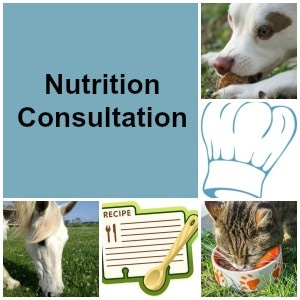 Nutrition Consultation, The Lightfoot Way