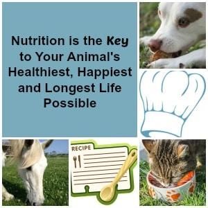 nutritionkey