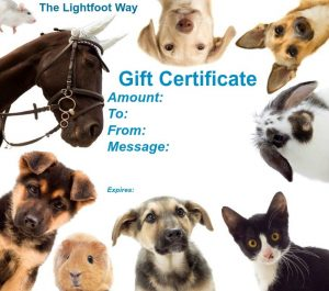 Gift Certificate, The Lightfoot Way