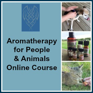 Aromatherapy for People and Animals. The LightFoot Way